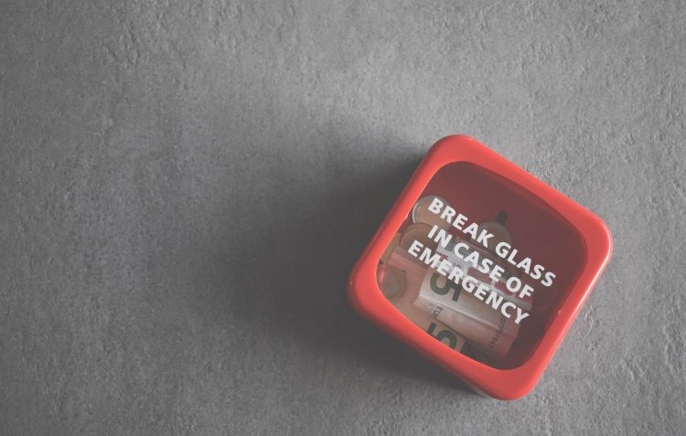 hoorayforsquats_goals_budget