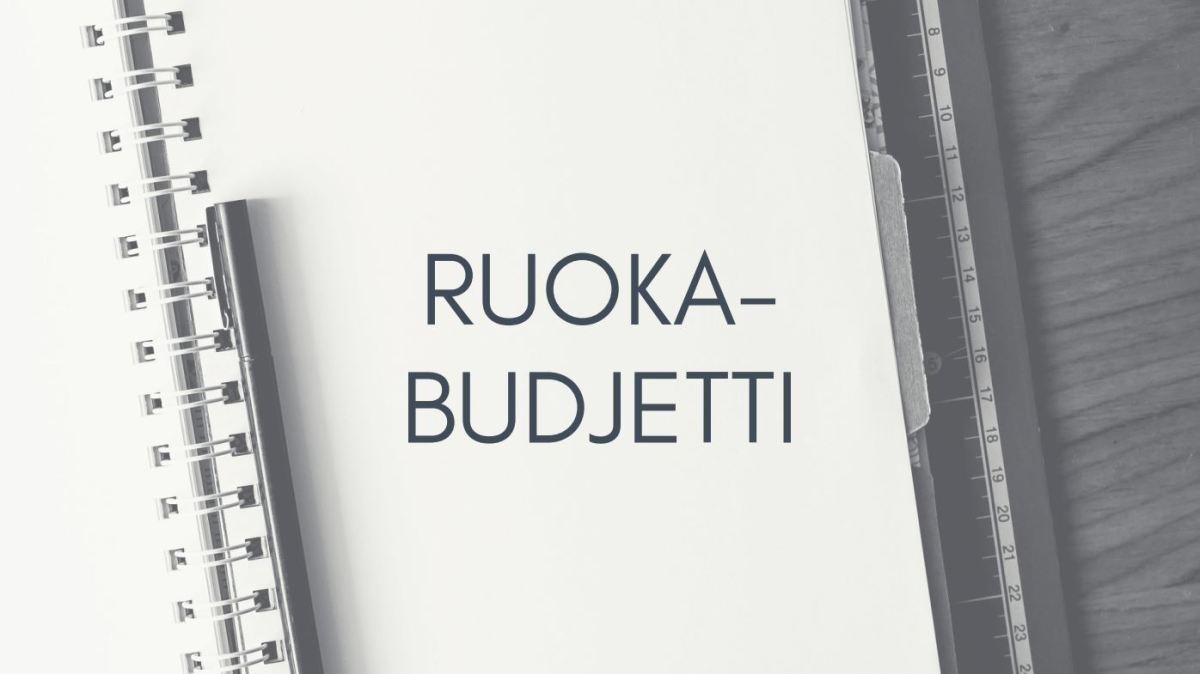 Viikon ruokabudjetti - MY GROCERY BUDGET
